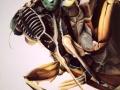 cicada-jpg